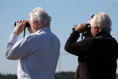 binoculars-2194228_normalizada